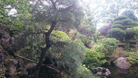 文京区の真珠院にある洞窟