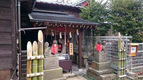 右京塚神社に内にある夫婦稲荷の「ご珍木」