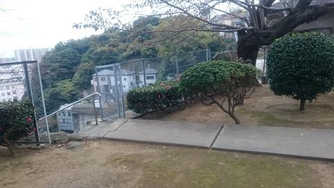 猿海山 龍本寺の「お穴さま」