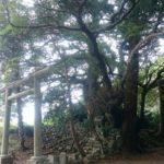 成田の秘道で遭遇した神々の眠る場所「中里道祖神」