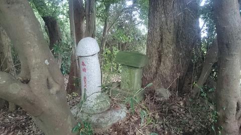 名の無い神社にひっそりと鎮座する金精神/成田市青山 石神大明神