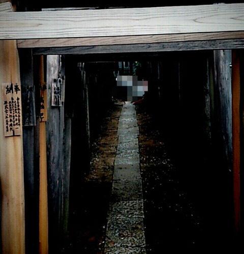 遊女の祈願!まるで鳥居の洞窟/松戸 池田弁財天