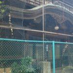 芝浦花街跡地にある芸子見番跡「旧協働会館」