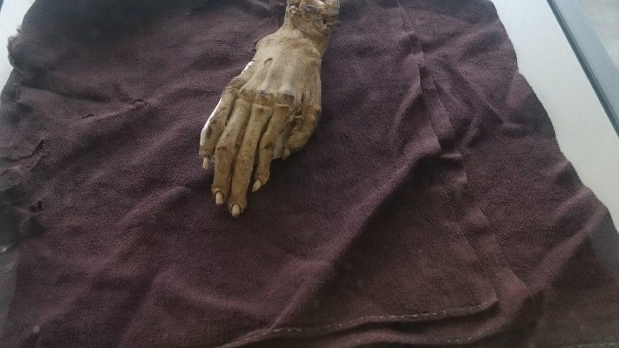 土浦佐野子町に眠る「河童の手のミイラ」
