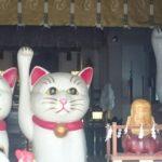 都内3大招き猫発祥の地の一つ浅草「今戸神社」