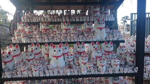 都内3大招き猫発祥の地の一つ世田谷「豪徳寺」