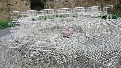 【建長寺】まるでバグの結界!狛兜と狛鍬形が守る不思議な空間「虫塚」