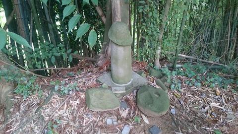 【取手】竜禅寺前の森に祀られた金精神