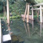 鹿島/至高の透明度…御手洗池/鹿島神宮/パワースポット
