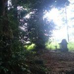 【我孫子】葺不合神社に祭られた男根型の石仏