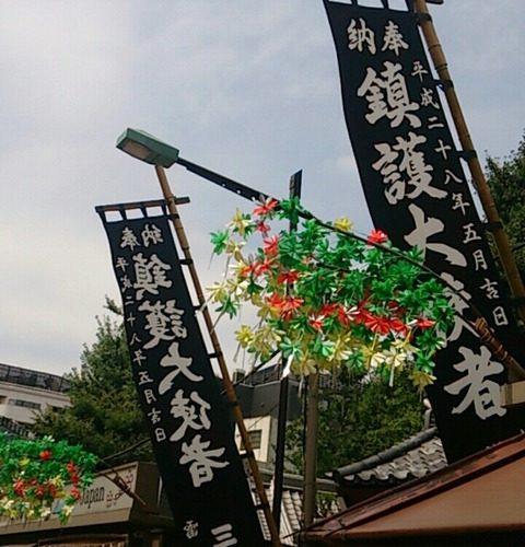 【台東区】浅草 鎮護堂に祀られた大量のおたぬき様…