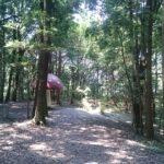 【柏】手賀の丘公園にいる巨大キノコと巨大恐竜