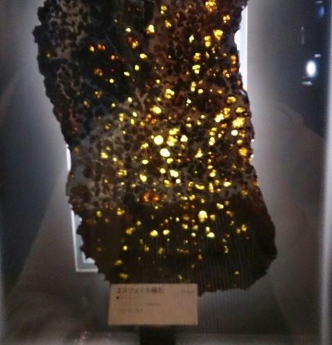 【坂東市】隕石と触れ合える…ミュージアムパーク 茨城県自然博物館