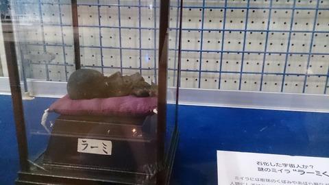 【銚子】宇宙人のミイラ「ラーミくん」が飾られてる「地球の丸く見える丘展望館」