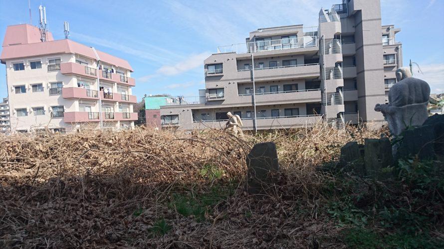 【松戸】秘密裡…マンションに囲まれたエデンの園