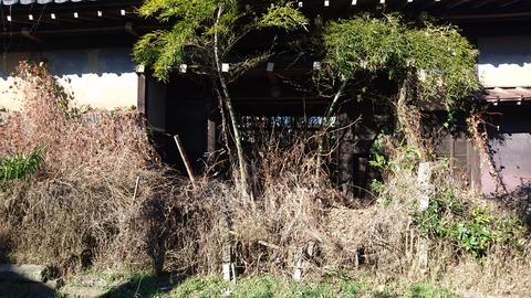 【柏市】住宅街にひっそりと潜む…荒廃した謎の長屋門…