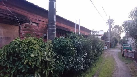 【柏】南柏~柏…旧水戸街道に残る…いなたい昭和の風景…