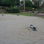 【柏】動物達による賢人会議が行われている松ヶ崎中央公園…