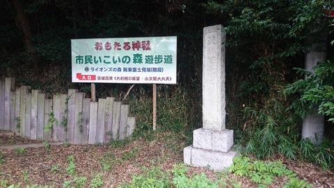 【取手】茨城百景の一つ大利根の展望…面足神社からのぞく…利根川…